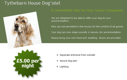 Accommodation for Your Dog